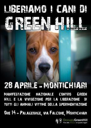Green Hill, la battaglia animalista