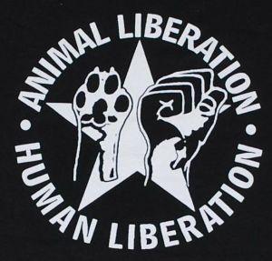 Protesta animalista: occupazione stabulario Farmacologia