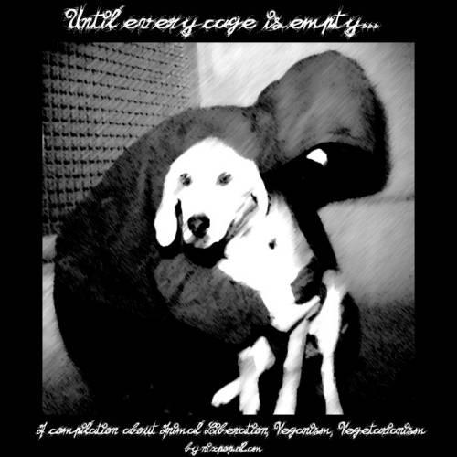 Ricerca e sperimentazione animale: due visioni differenti