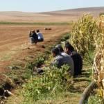 Report #2 giorno 1 – Bisogna difendere la Rojava.