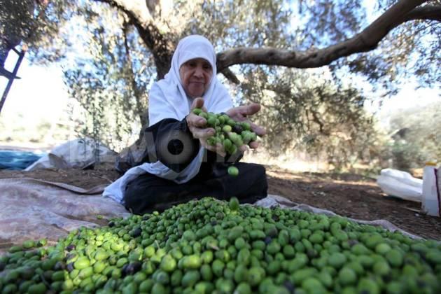 [DallaRete] ONU: la fine dell'assedio di Israele è un prerequisito per la prosperità di Gaza