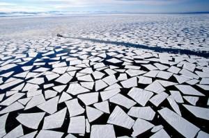 ghiaccio-batteri-cambiamenti-climatici