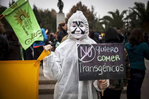 [DallaRete] Un tribunale contro la Monsanto, per far germogliare la giustizia
