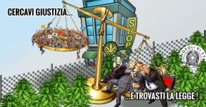 cannabis-legale-ma-a-quale-prezzo