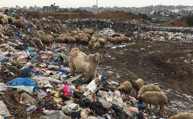 Perché un progetto di riciclo a Gaza? [Progetto 6220km2]