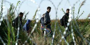 xmigrants_in_hungary_2015_aug_015.jpg,qitok=gzVjsCDi.pagespeed.ic.1hfUS12PWA
