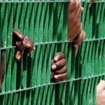 #20Maggio – Una manifestazione contro i muri e le leggi razziste non può essere una sfilata filogovernativa