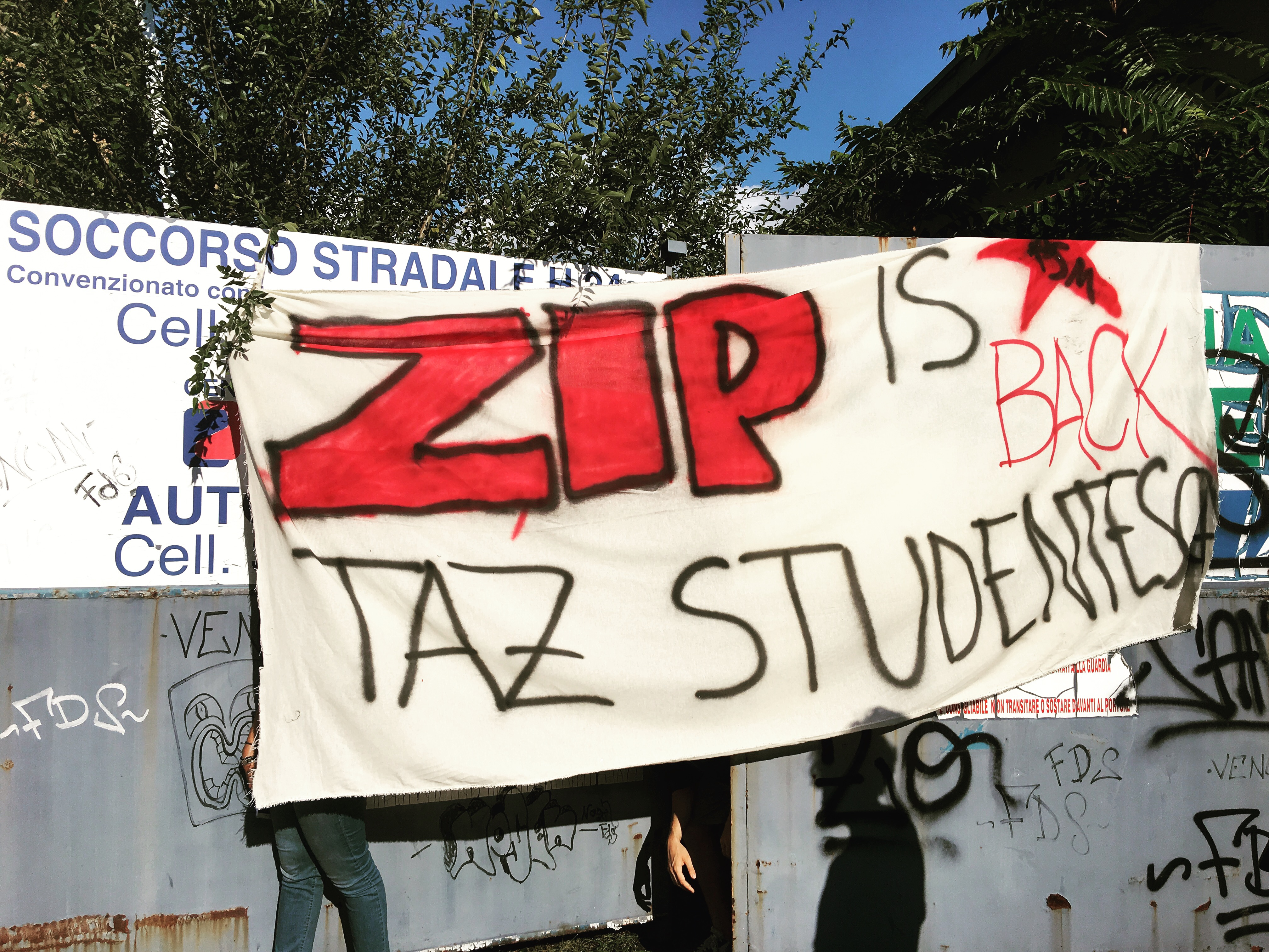 ZIP is back. TAZ studentesca