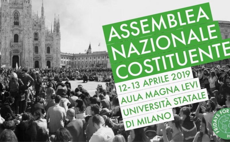 Assemblea Nazionale Costituente – Fridays for Future Italia