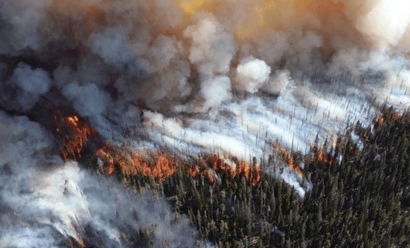 In Siberia il fuoco si allarga, Mosca si defila. E spuntano i cinesi