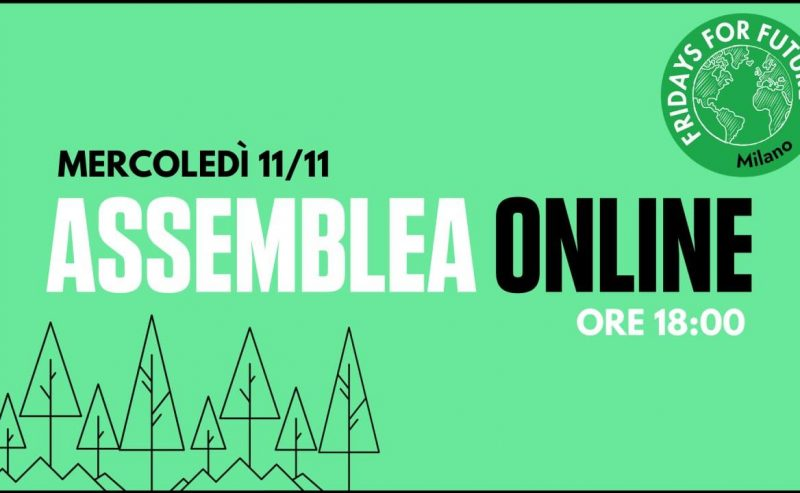 Assemblea ordinaria FFF Milano – 11 novembre