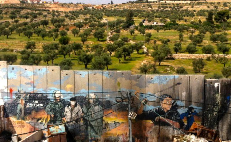 Foglie di gelso – la Palestina nei racconti di Al-Saifi